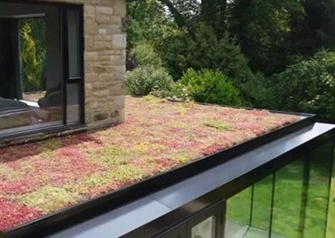Everything you Need to Know About Green Roofs