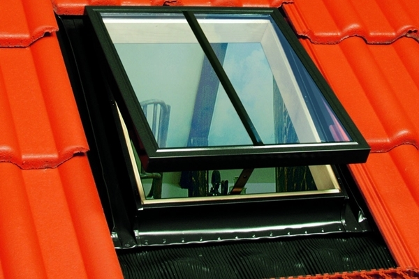 FAKRO WGI/C 16 Conservation Pine Double Glazed Top Hung Access Skylight 46x61cm