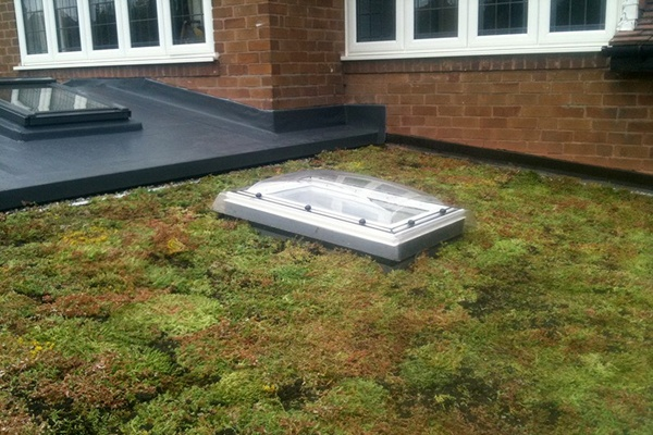 Grufekit green roof home extension