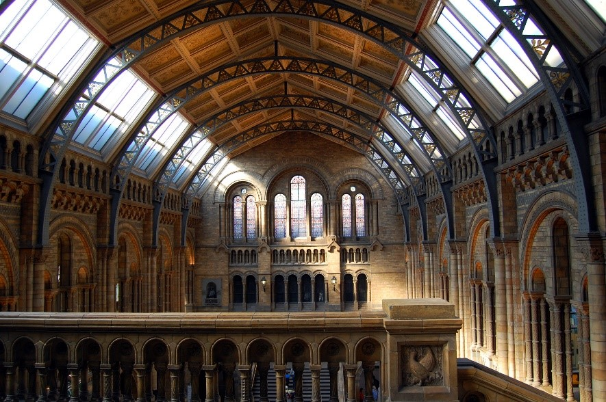Natural History Museum Conservation rooflight